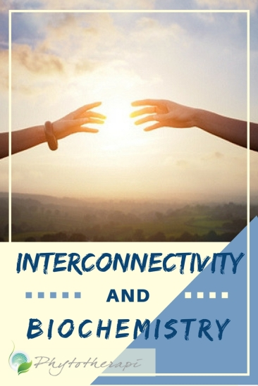 INTERCONNECTIVITY