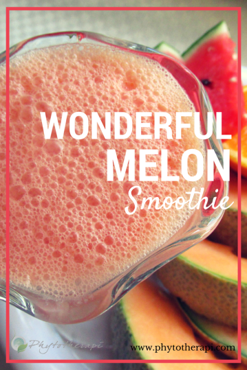 Wonderful Melon Smoothie