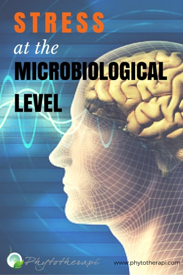 STRESS at the microbiological level