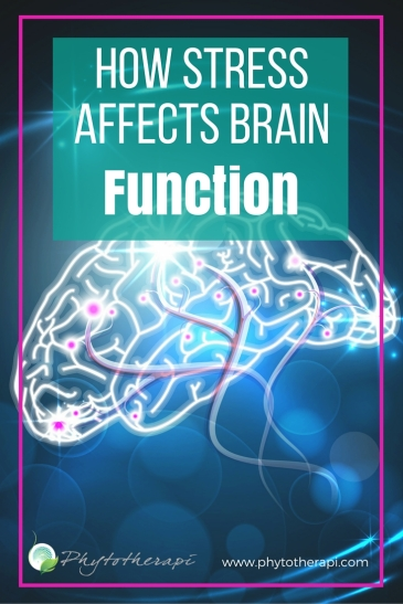 How StressAffects Brain Function