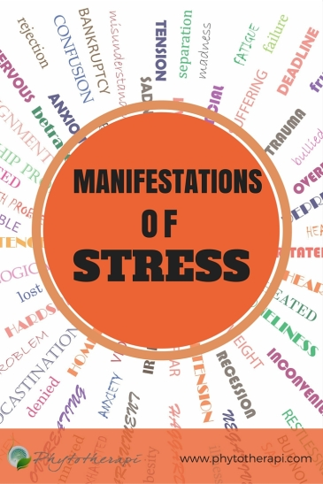 Manifestations of Stress (2)