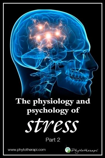 P&P Stress 2