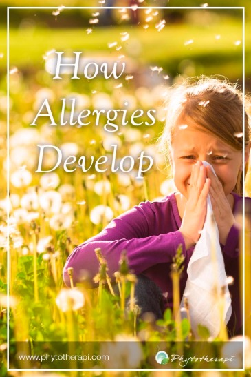 Allergies develop