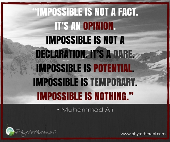 """Impossible is not a fact..jpg"