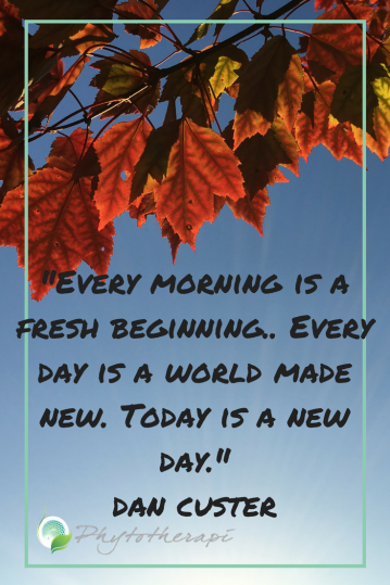 -Every morning is a fresh beginning. Every day i a world made new. Today is a new day.-dan custer
