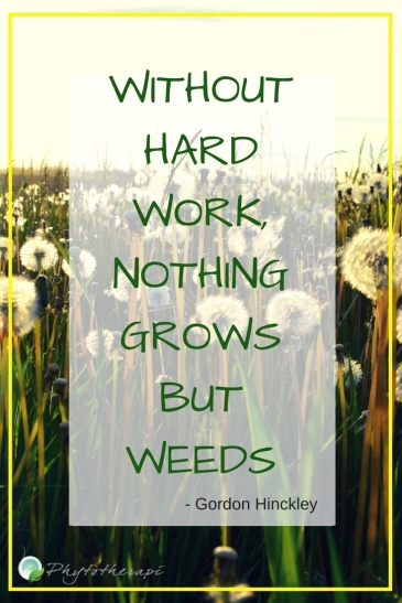 Without hard work, nothing growns but weeds