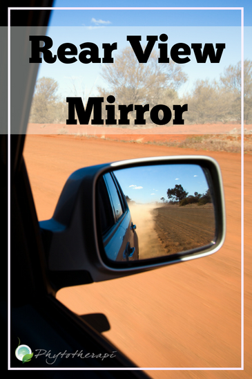 Rear View Mirror (1)