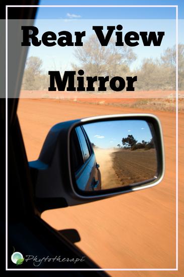 Rear View Mirror (1)