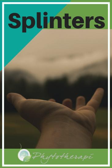 Splinters Blog Cover.png