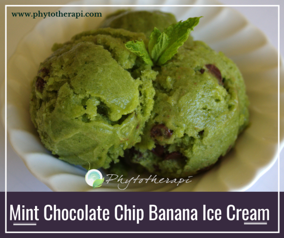 Mint Chocolate Chip Banana Ice Cream (1).png